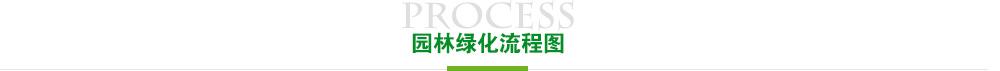 香港亚博官网流程图