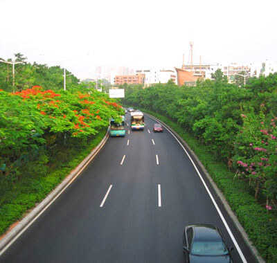 深圳市政道路园林绿化施工