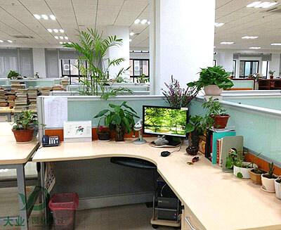 深圳市颖德科技有限公司花卉植株租摆养护管理