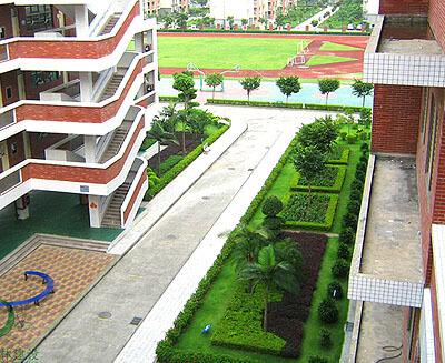 深圳龙岗福安学校绿化养护工程