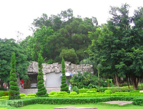 植物造景艺术工程