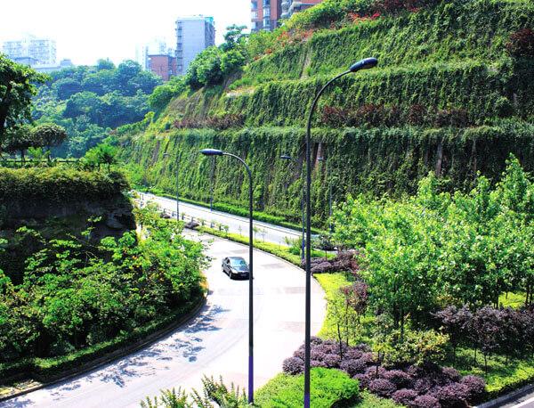 立体绿化公园工程