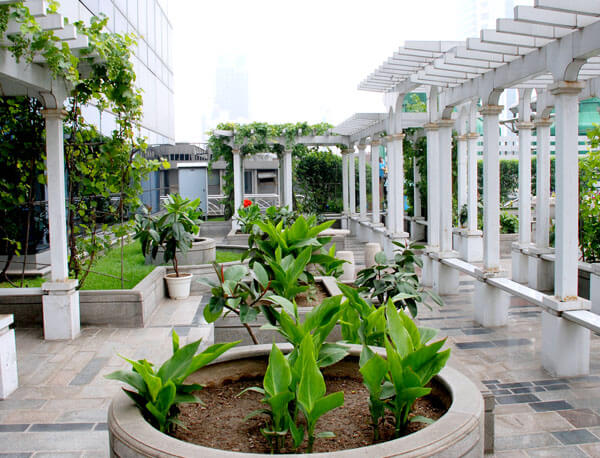惠州屋顶花园景观绿化工程