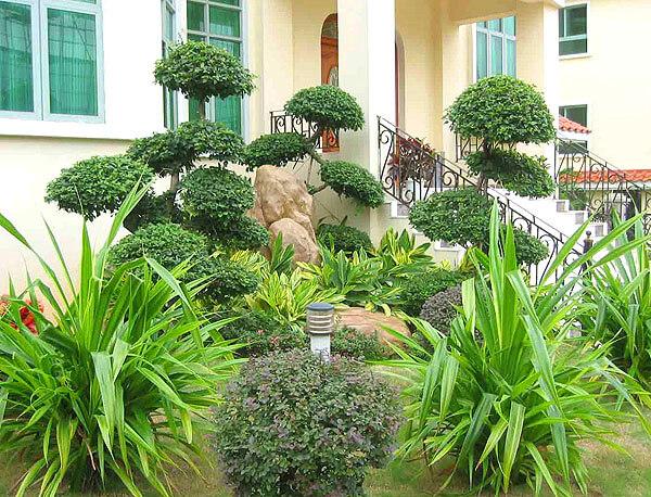 惠州私家别墅绿化施工