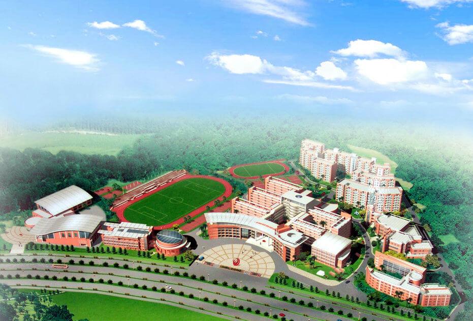 龙城高级中学绿化管养