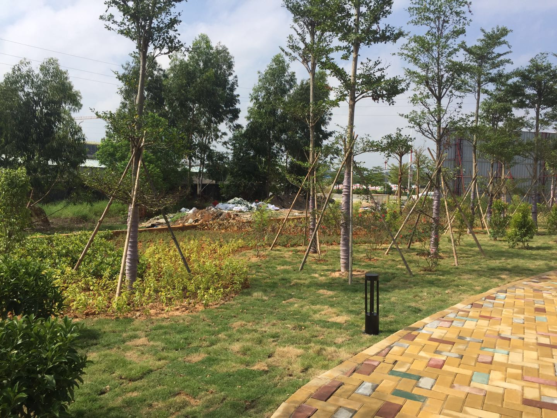 陆丰市东海经济开发区小区园林建设工程